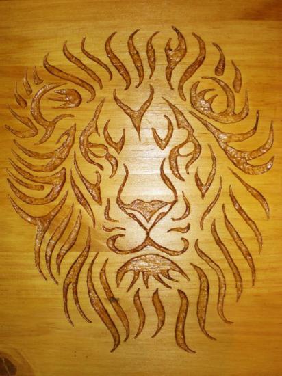 lion-3-1.jpg